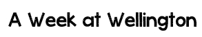 wellie week title in mea culpa font