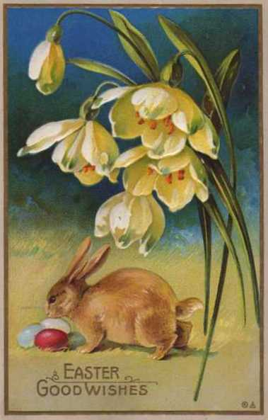 Easter_Bunny_Postcard_1900