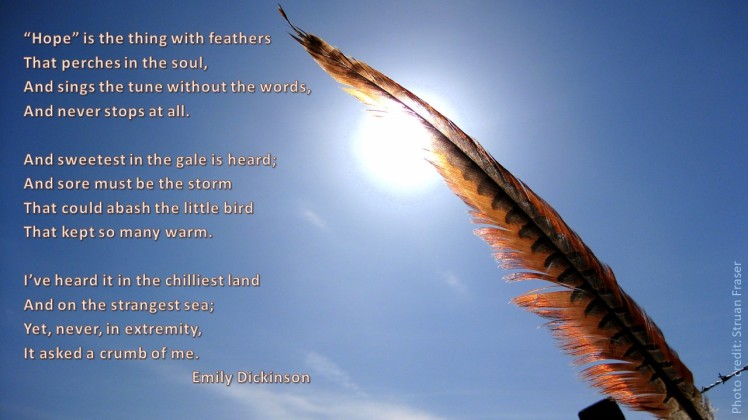 2020 Hope is the thing of feathers ED