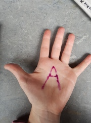 A - Murrays